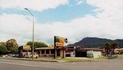 Cabbage Tree Hotel - Pubs Sydney